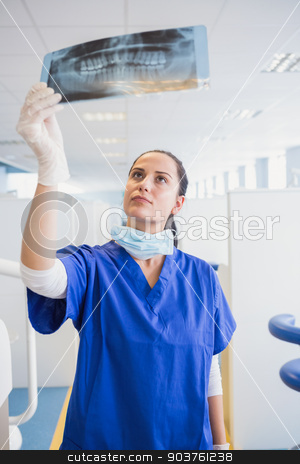 Concentrated dentist examining a x-ray stock photo, Concentrated dentist examining a x-ray in dental clinic by Wavebreak Media