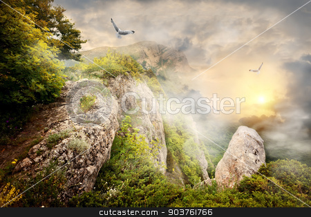 Fog in mountains stock photo, Morning fog in the mountains and big birds by Givaga