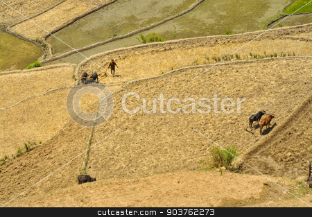 Ploughing fields in Nepal stock photo, Aerial view of ploughing fields in Nepal by Michal Knitl