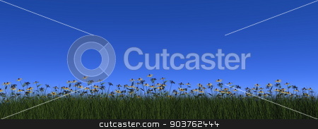 Grass and daisy - 3D render stock photo, Grass and daisy by blue day - 3D render by Elenarts