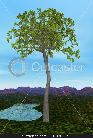 Glossopteris tree - 3D render stock photo, Glossopteris tree by day - 3D render by Elenarts