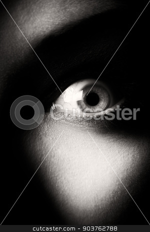 eye. black and white stock photo, eye. shallow depth of field. focus on the eyeball. black and white photo by Suchota
