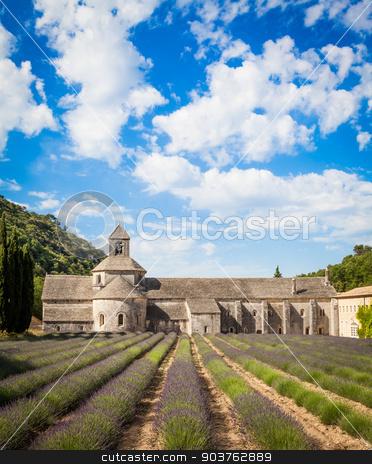 Lavander field stock photo, France, Provence Region, Senanque Abbey. Lavander field in summer season. by Paolo Gallo