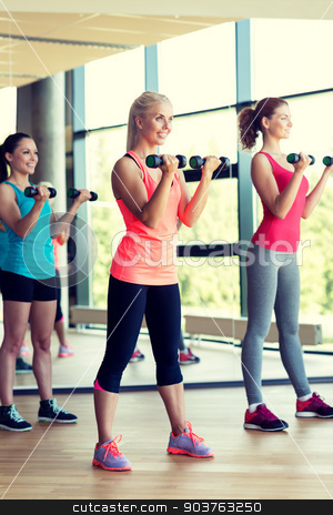 group of women with dumbbells in gym stock photo, fitness, sport, training, gym and lifestyle concept - group of women with dumbbells in gym by Syda Productions