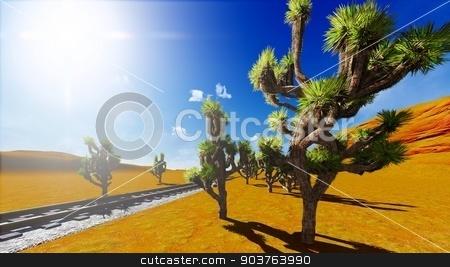 Joshua trees and railroad stock photo, Joshua trees growing along old railway by Dariusz Miszkiel