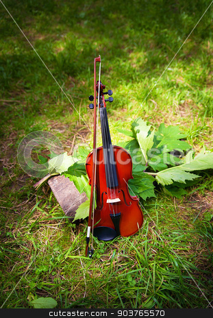 Violin on a grass and green leaves around stock photo, Violin on a grass and green leaves around. by Sergiy Artsaba