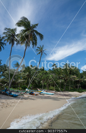 Sri Lankan fishing boats stock photo, Sri Lankan fishing boats on sandy beach with coconut palm trees. Rocky Point, Tangalle, Southern Province, Sri Lanka, Asia. by ArtesiaWells