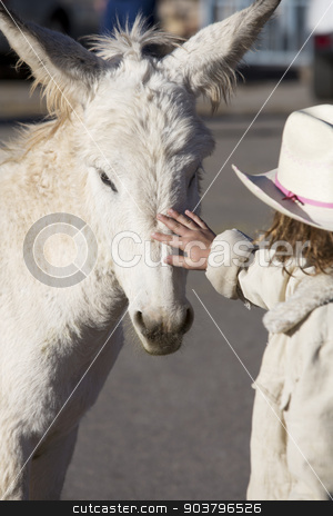 Burro with Child stock photo, White Baby Burro with young girl in Oatman Arizona USA by Scott Griessel