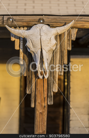 Southwestern Style Cow Skull stock photo, Iconic western cow skull hanging from a post by Scott Griessel