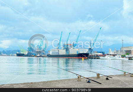 Working cranes in sea port stock photo, Working cranes in sea port for cargo industry design by MaStudio