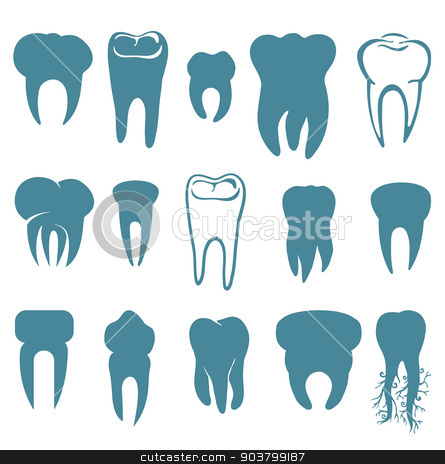 Human teeth set stock vector clipart, Human teeth set isolated on white background  by Firin