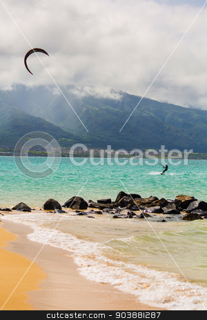 Kite Surfer on Beach stock photo, Maui kite surfer on shore at Kanaha Beach Park by Scott Griessel