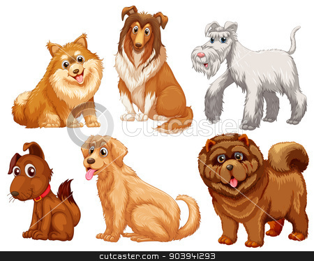 Different species of dogs stock vector clipart, Different species of dogs on a white background  by Matthew Cole