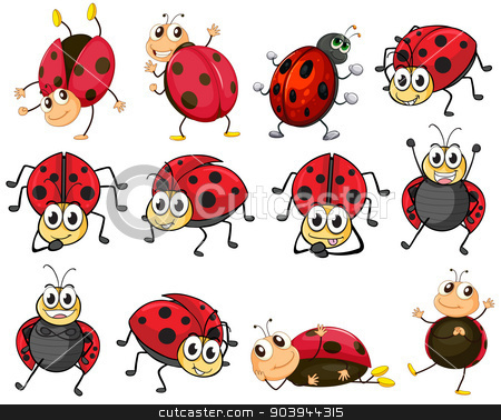Cute ladybugs stock vector clipart, Illustration of the cute ladybugs on a white background by Matthew Cole