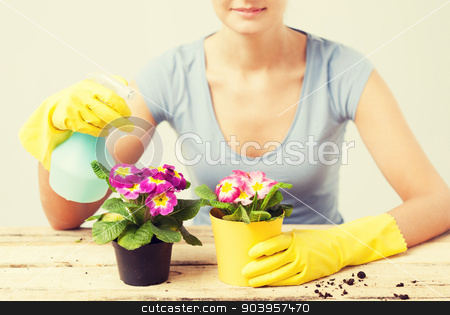 housewife with flower in pot and spray bottle stock photo, lovely housewife with flower in pot and spray bottle by Syda Productions