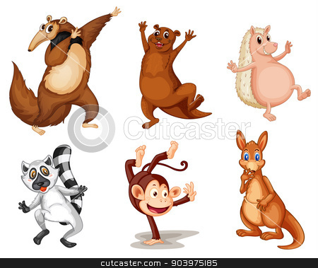 Mixed animals stock vector clipart, Illustration of animals on white by Matthew Cole