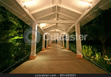 Walkway stock photo, A tile walkway with columns and plants by Lucy Clark