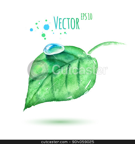 Watercolor leaf with water drop. stock vector clipart, Vector watercolor illustration of green leaf with water drop. by Sofya Golovanova