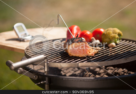 Checking meat stock photo, Checking meat temperature while grilling, vegatebles on background by Dmytro Buianskyi