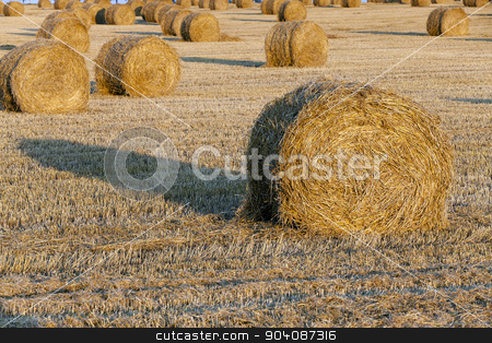 straw stack   stock photo,   the photographed straw stack during the harvest company of cereals by ihar leichonak