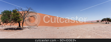 wide panorama Dune 45 in sossusvlei Namibia stock photo, wide panorama of Dune 45 in sossusvlei Namibia, view from the top of a dune, best place in namibia by Artush