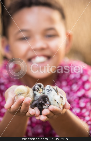 Joyful Kid Holding Pet Chicks stock photo, Cute African female child with baby chicks by Scott Griessel