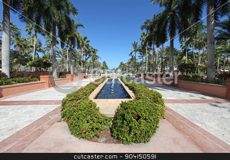 Fountain stock photo, A fountain surrounded by plants and palm trees by Lucy Clark