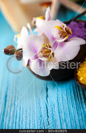 Beautiful orchids, fresh and organic concept stock photo, Beautiful orchids, fresh and organic concept by Sebastian Duda