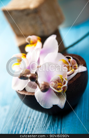 Soap spa, fresh and organic concept stock photo, Soap spa, fresh and organic concept by Sebastian Duda