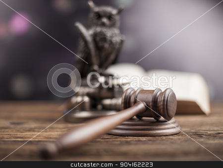 Law concept, owl in a judge gavel concept  stock photo, Law concept, owl in a judge gavel concept by Sebastian Duda