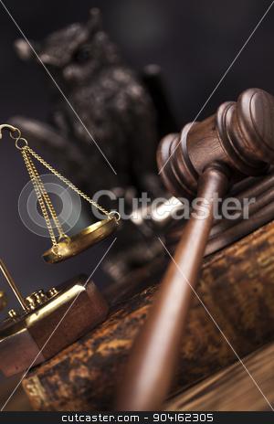 Law concept, owl in a judge gavel concept  stock photo, Law concept, owl in a judge gavel concept by Sebastian Duda