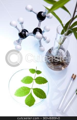 Chemistry equipment, plants laboratory experimental stock photo, Chemistry equipment, plants laboratory experimental by Sebastian Duda