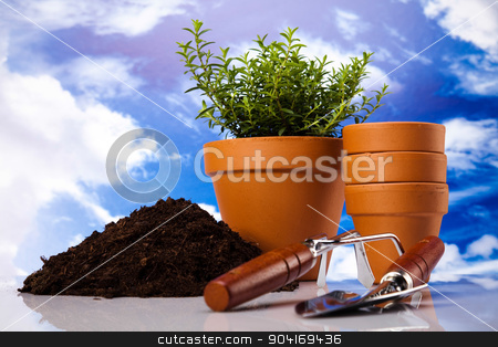 Garden background, vivid bright springtime concept stock photo, Garden background, vivid bright springtime concept by Sebastian Duda