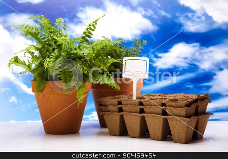 Gardening concept, vivid bright springtime theme stock photo, Gardening concept, vivid bright springtime theme by Sebastian Duda