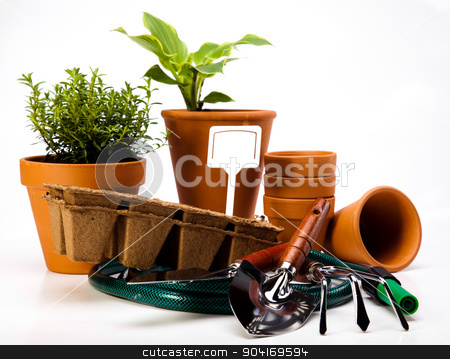 Assorted gardening, vivid bright springtime concept stock photo, Assorted gardening, vivid bright springtime concept by Sebastian Duda