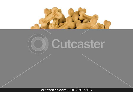 pims_20090629_as0672.jpg stock photo, Close-up of a heap of dog biscuits by imagedb