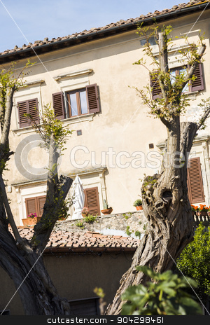 Building in a old town stock photo, Building in a old town, Volterra, Province of Pisa, Tuscany, Italy by imagedb