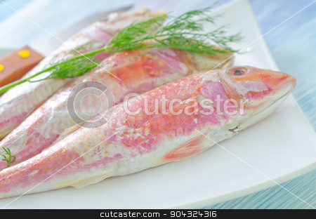 mullet stock photo, mullet by tycoon