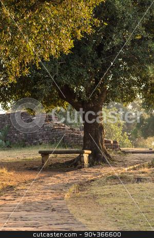 Bench under the tree  stock photo, Bench under the tree in the India by Vassiliy Kochetkov