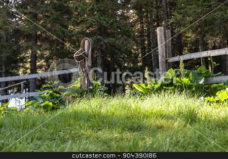 Rurak Wooden Gates and Green Grass stock photo, Rurak Wooden Gates and Green Grass Scene by Oleksandr Solonenko