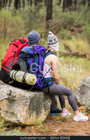 Rear view of a young happy hiker couple stock photo, Rear view of a young happy hiker couple in the nature by Wavebreak Media