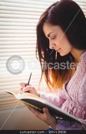 Pretty brunette studying beside window stock photo, Pretty brunette studying beside window in a bright room by Wavebreak Media