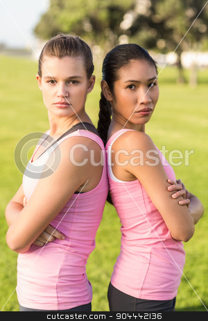 Two women wearing pink for breast cancer stock photo, Portrait of two women wearing pink for breast cancer in parkland by Wavebreak Media
