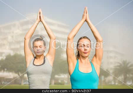 Peaceful sporty blondes doing yoga together stock photo, Peaceful sporty blondes doing yoga together in parkland by Wavebreak Media