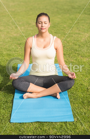 Peaceful fit woman meditating stock photo, Peaceful fit woman meditating in parkland by Wavebreak Media