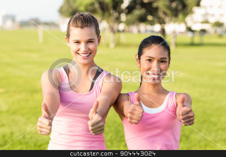 Two smiling women wearing pink for breast cancer  stock photo, Portrait of two smiling women wearing pink for breast cancer in parkland by Wavebreak Media