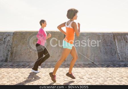 Two sporty women jogging together stock photo, Two sporty women jogging together at promenade by Wavebreak Media