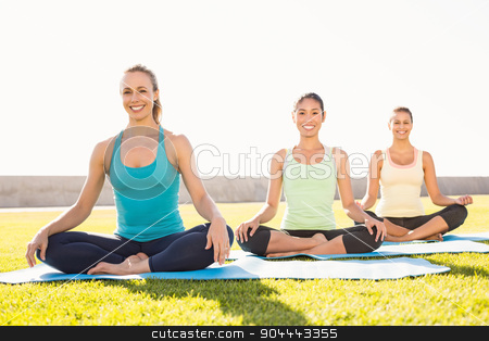 Smiling sporty women doing yoga together stock photo, Portrait of smiling sporty women doing yoga together in parkland by Wavebreak Media