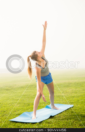 Sporty blonde doing warrior pose on exercise mat stock photo, Sporty blonde doing warrior pose on exercise mat in parkland by Wavebreak Media