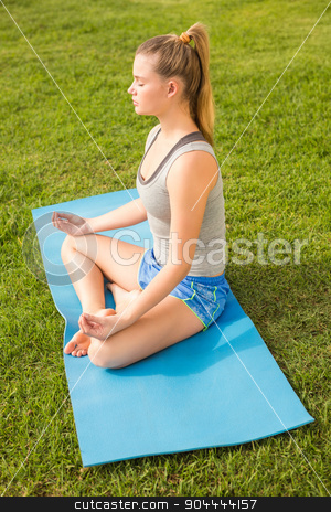 Peaceful sporty blonde meditating on exercise mat stock photo, Peaceful sporty blonde meditating on exercise mat in parkland by Wavebreak Media